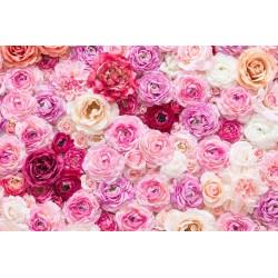 Papier peint photo romantique tapisserie florale - Les roses