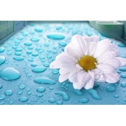 Revêtement de sol fleur salle de bain trompe l'oeil 3D - Marguerite avec les gouttes d'eau sur fond bleu