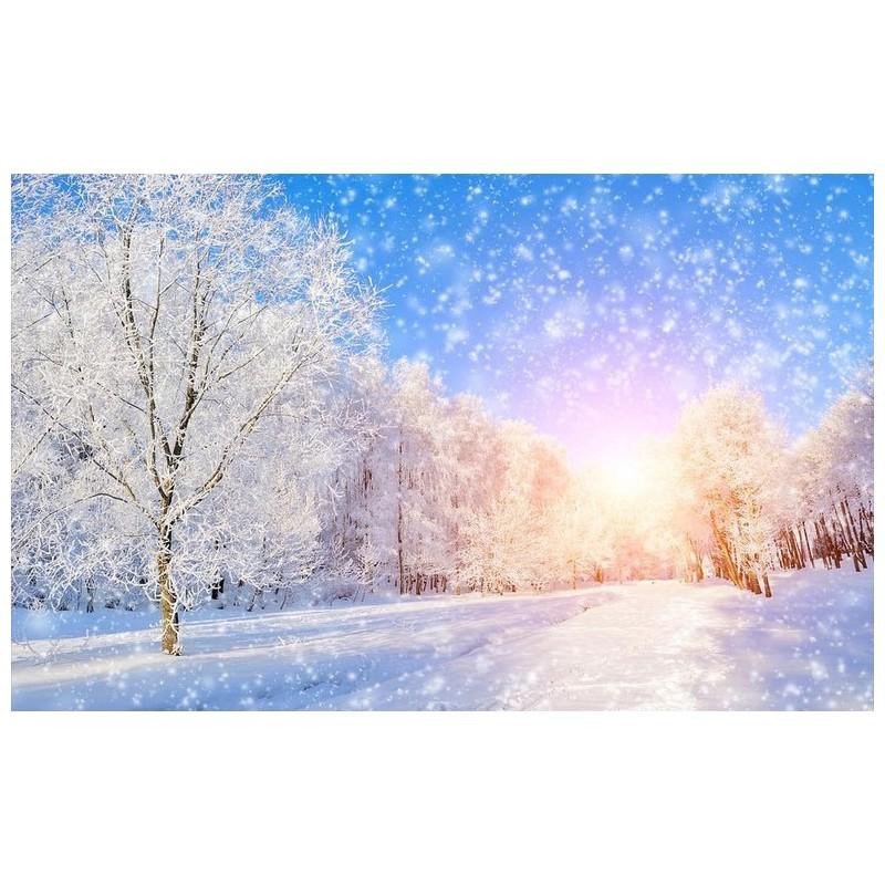 papier peint photo panoramique chambre coucher paysage d 39 hiver arbre enneig papier peint sol 3d. Black Bedroom Furniture Sets. Home Design Ideas