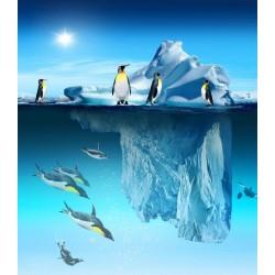 Papier peint photo animaux paysage polaire - Les pingouins