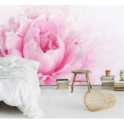 Papier peint photo romantique macrophotographie - Pivoine rose