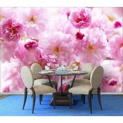 Papier peint photo romantique macrophotographie - Les fleurs de cerisier