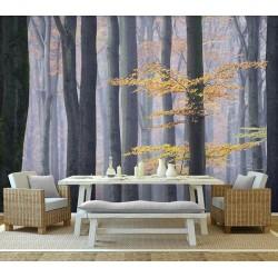 Tapisserie panoramique paysage nature - Forêt d'automne