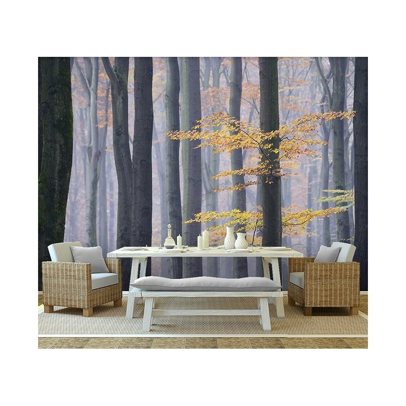 tapisserie photo paysage nature arbre d 39 automne papier peint sol 3d. Black Bedroom Furniture Sets. Home Design Ideas