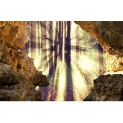 Papier peint photo trompe l'œil 3D trou dans le mur paysage nature - Les rayons de soleil dans la forêt