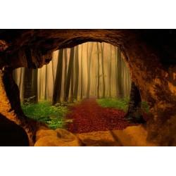 Papier peint photo trompe l'œil 3D trou dans le mur paysage nature - Forêt dans le brouillard