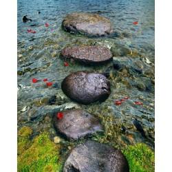 Revêtement de sol trompe l'œil 3D paysage nature - Les pas japonais dans la rivière avec les pétales rouges