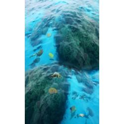 Revêtement de sol trompe l'œil 3D paysage de la mer - Les rochers, les poissons et les coquillages