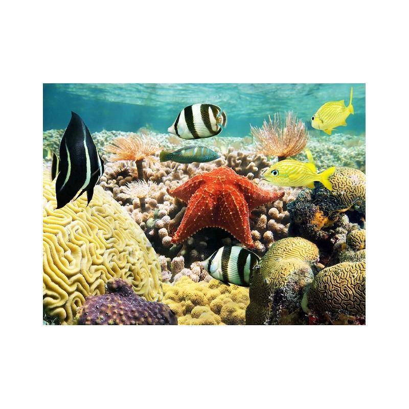 Sol 3d r sine poxy cuisine salle de bain trompe l 39 oeil for Sol salle de bain jonc de mer