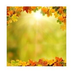 Décor plafond paysage nature - Le ciel d'automne