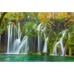 Chute d'eau dans la forêt d'automne