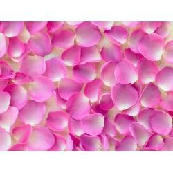 Revêtement de sol romantique - Les pétales de rose