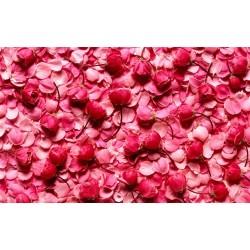 Revêtement de sol romantique - Les roses rouges