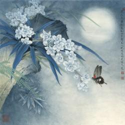 Peinture chinoise ancienne - Les orchidées avec le papillon dans la nuit
