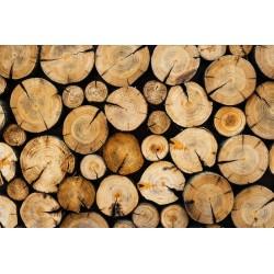 Revêtement de sol couloir imitation bois - Les rondins de bois
