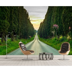 Papier peint photo paysage trompe l'œil 3D - Route traverse la forêt de conifères