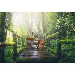Papier peint photo paysage trompe l'œil 3D - Les daims dans la forêt - Extension d'espace