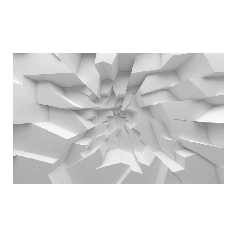 Décor Plafond Trompe Lu0027oeil 3D   Blocs De Plâtre