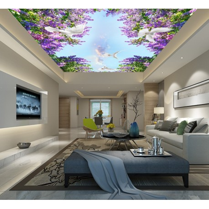 Plafond Tendu Translucide Imprime Sur Mesure Decoration D Interieur