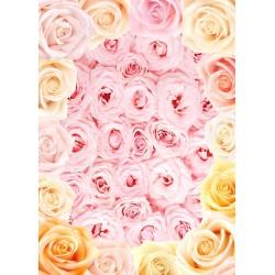 Décor plafond fleur romantique - Les roses