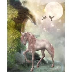 Papier peint fantaisie chambre fille - Cheval unicorne dans la nuit 1