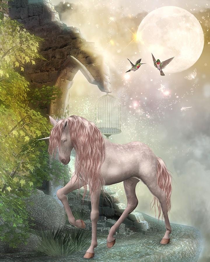 papier peint fantaisie personnalisable cheval unicorne dans la nuit