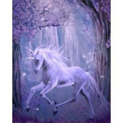 Papier peint romantique-Cheval unicorne dans la nuit 3