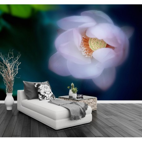 Papier peint photo zen - Lotus rose pale dans la brume