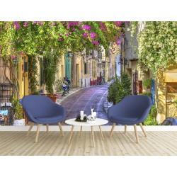Paysage trompe l'œil 3D extension d'espace - Végétation et fleur dans la ruelle provençale