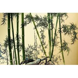 Papier peint asiatique - Bambou 1