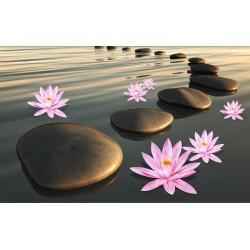 Revêtement sol paysage zen - Les lotus au coucher du soleil