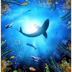 Décor plafond personnalisé - Fond marin - Le requin