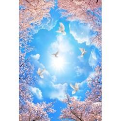 Décor plafond romantique - Les fleurs de cerisier sous le soleil de printemps