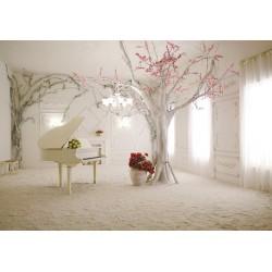 Papier peint romantique extension d'espace - Scène d'une pièce théâtre