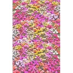 Revêtement de sol romantique - Le tapis de fleurs