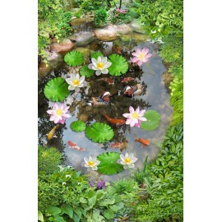 Revêtement de sol zen - petit étang entouré de végétation
