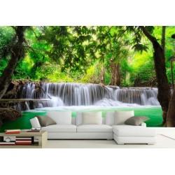 Paysage zen - Au cœur de la forêt tropicale