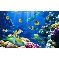 Revêtement de sol paysage fond marin - Les poissons et les coraux