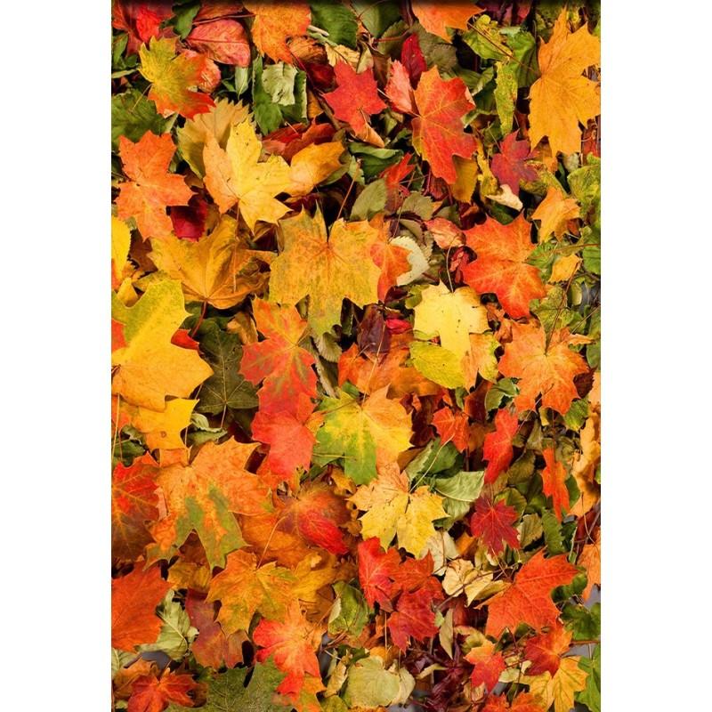 Rev tement de sol vinyle autocollant pvc personnalis paysage d 39 automne tapis de feuilles - Paysage d automne dessin ...