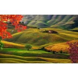 Papier peint photo paysage - La plaine