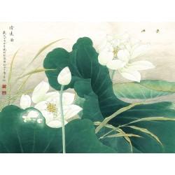 Tapisserie vintage style asiatique - Les lotus blancs