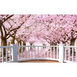 Papier peint photo trompe l'œil effet 3D - Paysage romantique avec les cerisiers - Extension d'espace