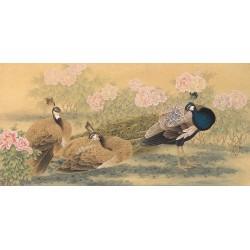 Peinture asiatique ancienne - Les paons dans le jardin de pivoine
