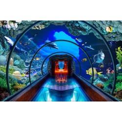 Extension d'espace - Paysage fond marin trompe l'œil 3D - Aquarium géant