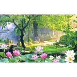 Papier peint photo paysage - Forêt à l'aube avec les lotus