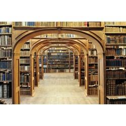 Papier peint 3D vintage - Bibliothèque - Extension d'espace