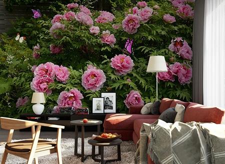 pivoine,fleur rose,papier peint,papier peint pivoine,papier peint photo fleur,papier peint panoramique,papier peint intissé fleur,tapisserie murale pivoine,poster salle à manger fleur,sticker mural pivoine rose,tête de lit pivoine,décor floral