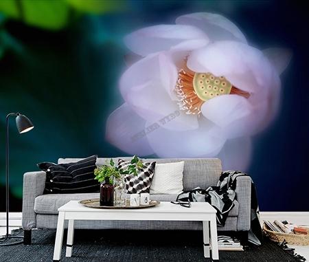 lotus,fleur zen,papier peint,papier peint zen,papier peint lotus,papier peint fleur zen,papier peint personnalisé,papier peint intissé,tapisserie lotus zen,poster géant chambre lotus,sticker mural séjour lotus,tête de lit lotus zen,décoration murale fleur zen