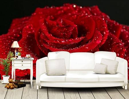 rose,rose rouge,papier peint intisé rose,papier peint vinyle fleur rouge,papier peint floral,papier peint textile fleur,tapisserie florale rose,tapisserie soie fleur,sticker mural fleur rouge,poster géant fleur,tête de lit fleur rouge,tête de lit rose,décoration florale rose