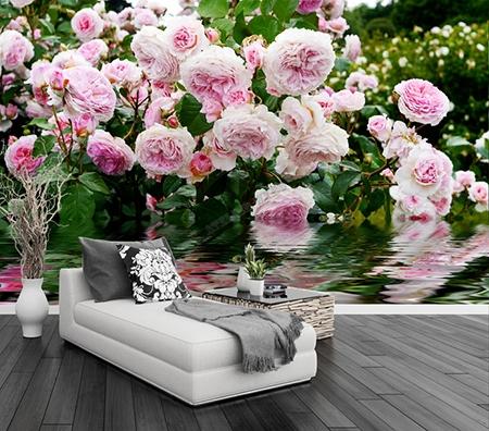 rose,rosier,décoration murale fleur,décoration fleur,poster géant mural fleur,papier peint fleur,tapisserie fleur,sticker fleur,sticker mural fleur,papier peint rosier,tapisserie rosier,poster géant rose,papier peint floral,tapisserie fleurie,poster xxl fleur,sticker xxl rose,papier peint chambre rose,tapisserie séjour rose,poster xxl salon